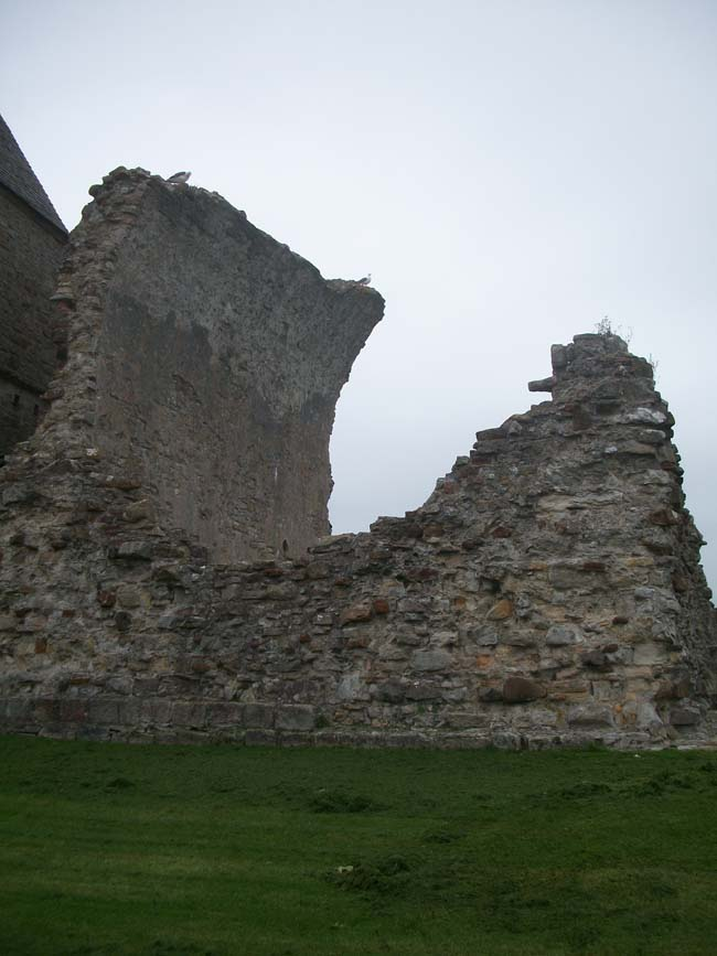 Inchcolm Abbey 3
